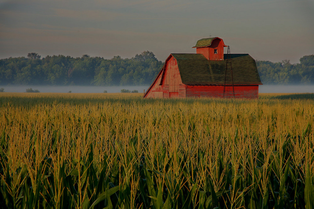 farm and crop insurance Freehold NJ